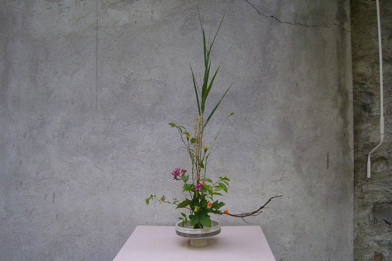 esino_4-2011